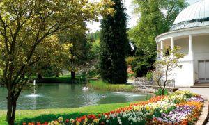 8-Tage-Seniorenreise - Bad Wildungen – Kurpark & architektonische Pracht