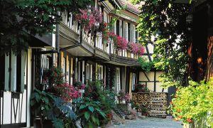8-Tage-Seniorenreise - Vielfältiger Schwarzwald